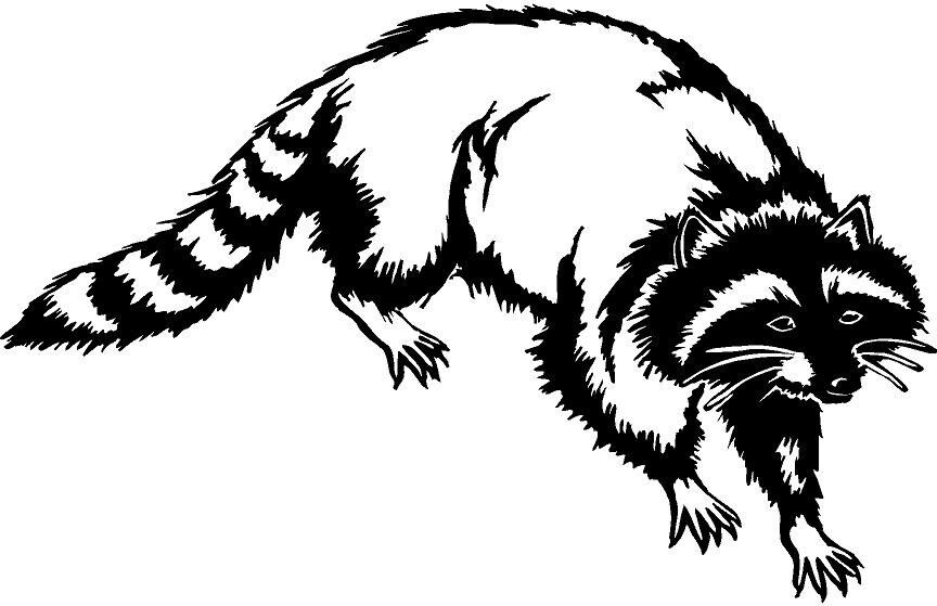 Raccoon Tree Animal Tail Hat Coon Dog Hunting Vinyl Decal