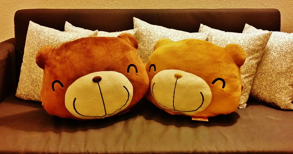 Cute Pillow Warmer : CHOCO TEDDY CUTE HAND WARMER AND CUSHION PILLOW eBay