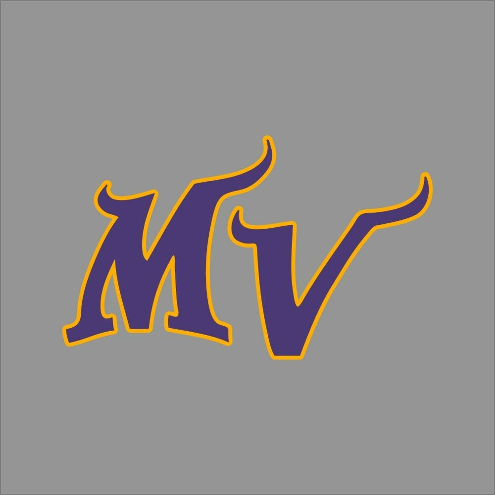 Minnesota Vikings 6 Nfl Team Logo Vinyl Decal Sticker Car