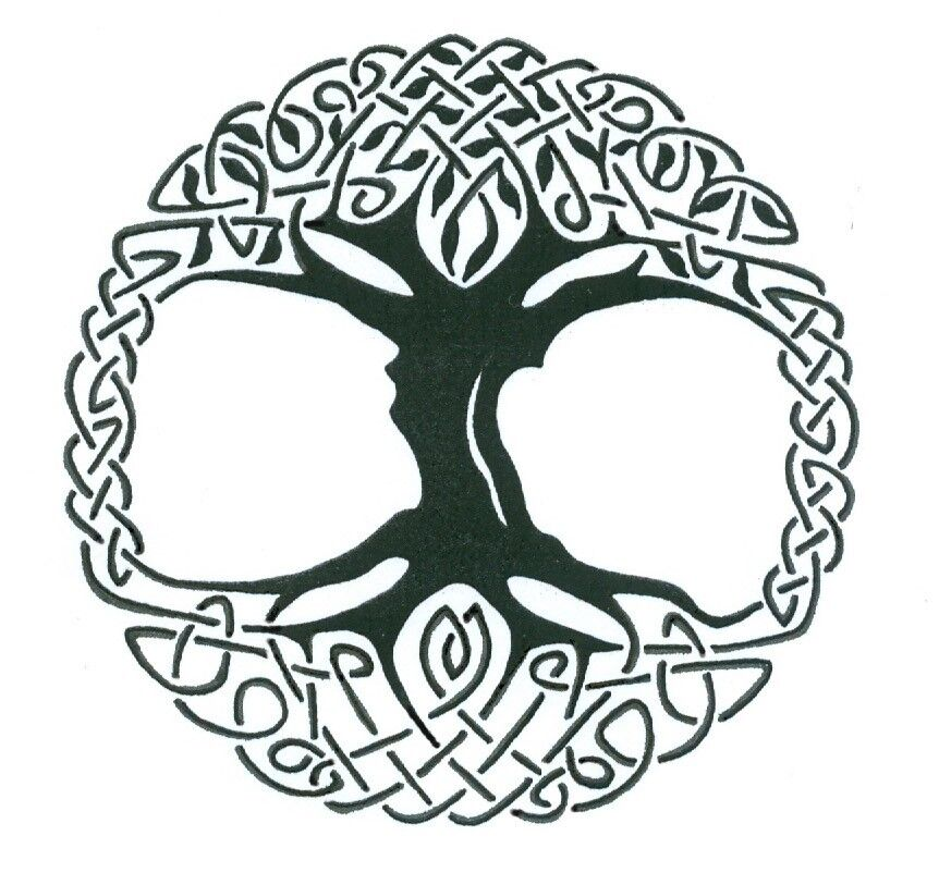 Celtic Tree Of Life Vinyl Window Sticker Decal Car Wall
