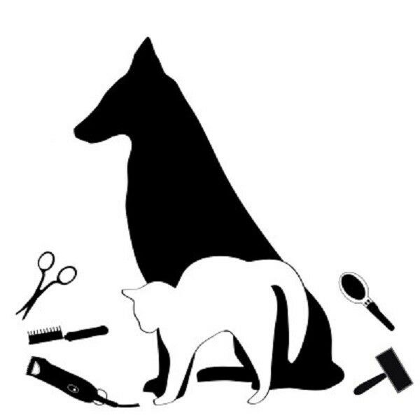 DOG GROOMER Grooming Puppy Cat Car Window Sign Decal Sticker WHITE ... Chihuahua X Pitbull