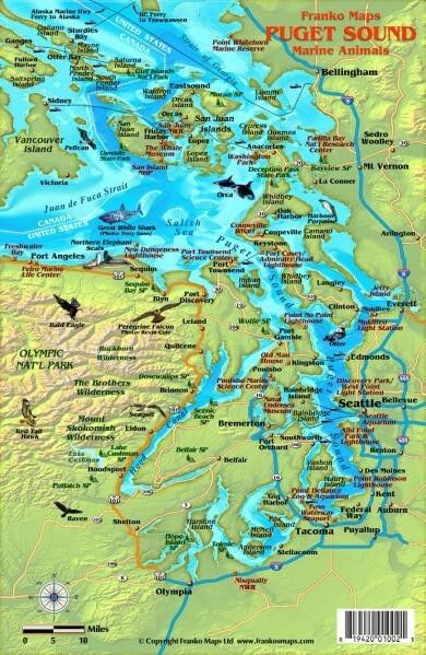 Puget sound marine animals laminated map fish card by for Fishing puget sound