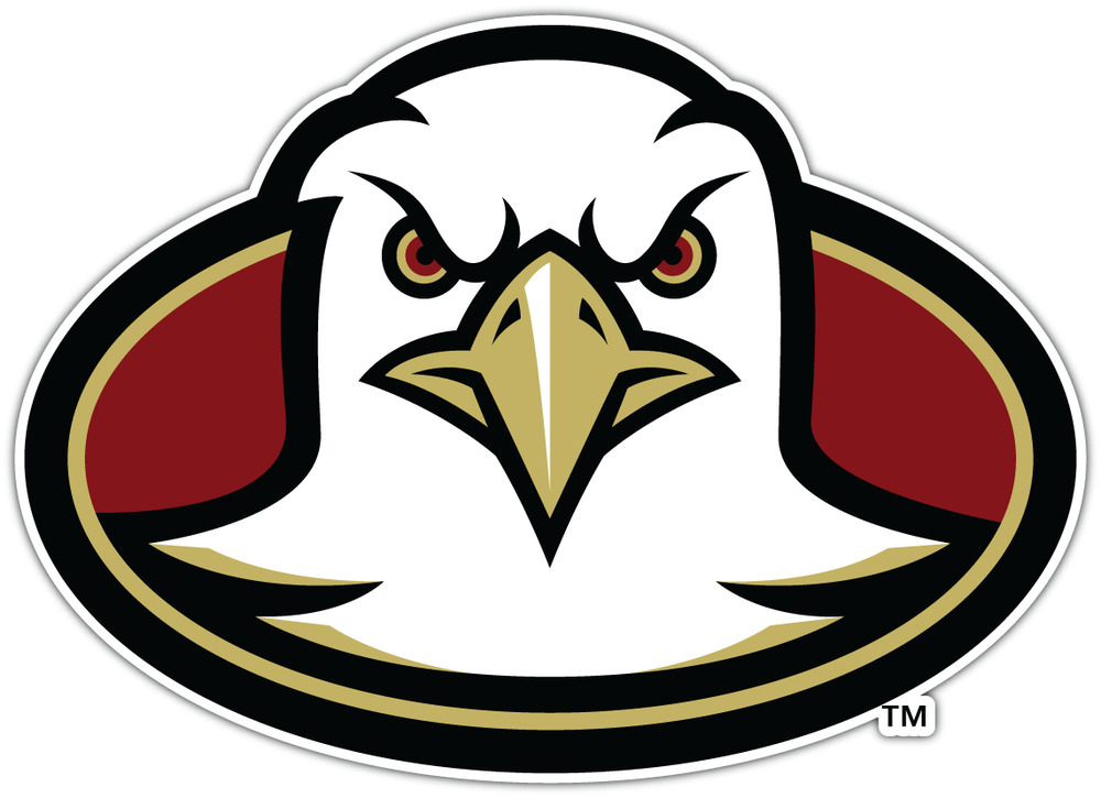 Boston College Eagles Ncaa Vinyl Car Bumper Window Sticker