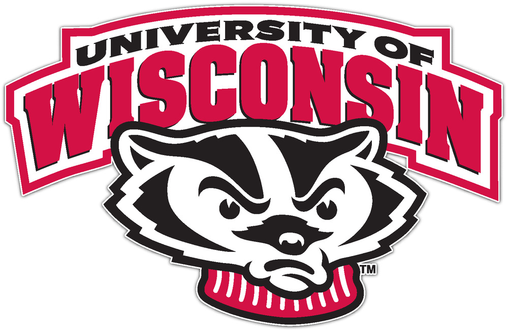 Window Badgers Sticker Bumper Wisconsin Car NCAA Vinyl