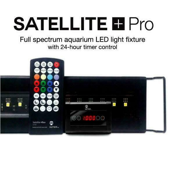 Current Usa Satellite Plus Pro 48 Quot 60 Quot Led Freshwater
