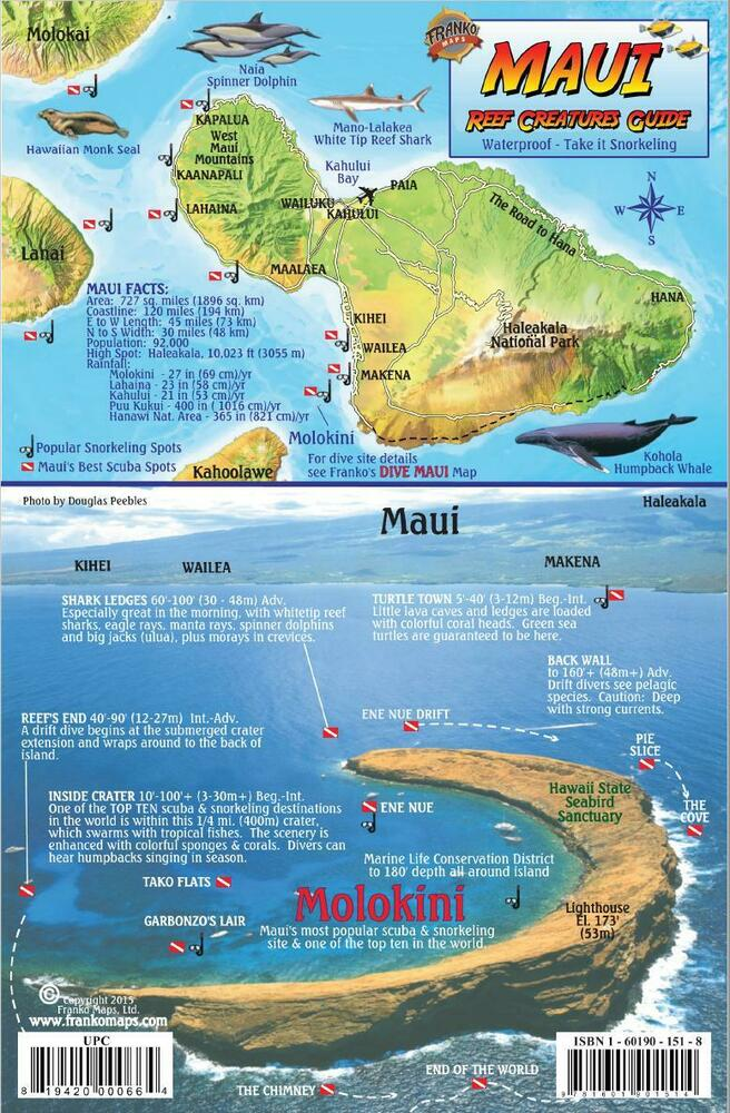 Maui hawaii map reef creatures guide laminated fish card for Maui fishing store