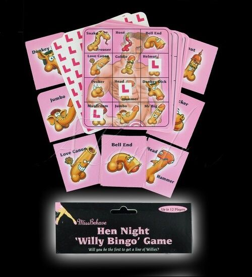 Hen party game 39 willy bingo 39 hen night party games for Hen party at home decorations