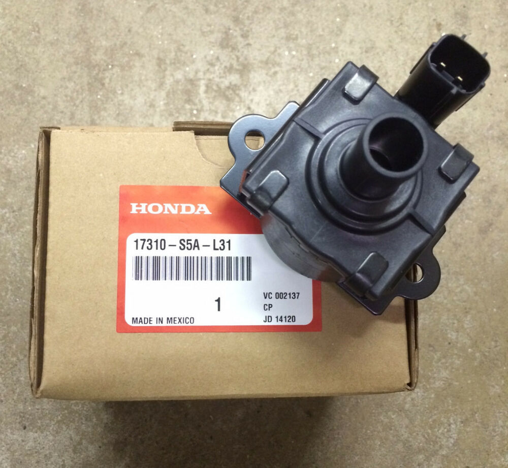 Genuine Oem Honda Civic Cr V Canister Vent Shut Valve Emission Cvs Crv Ebay