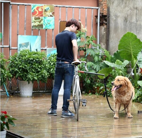 Bicycle Dog Walking Attachment