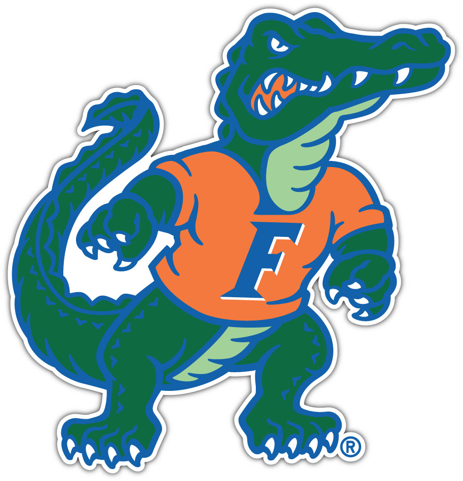 Florida Gator Stickers : Florida gators ncaa vinyl car bumper window sticker decal