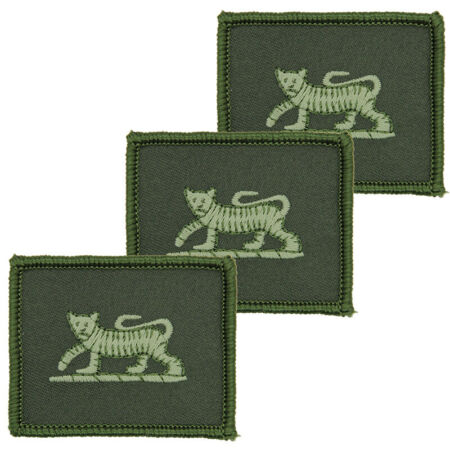 img-PWRR PRINCESS OF WALES ROYAL REGIMENT MTP GREEN PCS TRF BRITISH ARMY BADGE