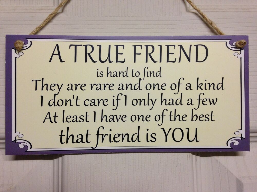 Friend Quote Plaque : Friend friendship plaque sign funny gift a true