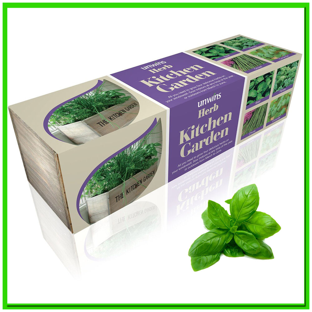 Kitchen Window Herb Planter: Kitchen Herb Planter Windowsill Garden Box Plant Pot Kit