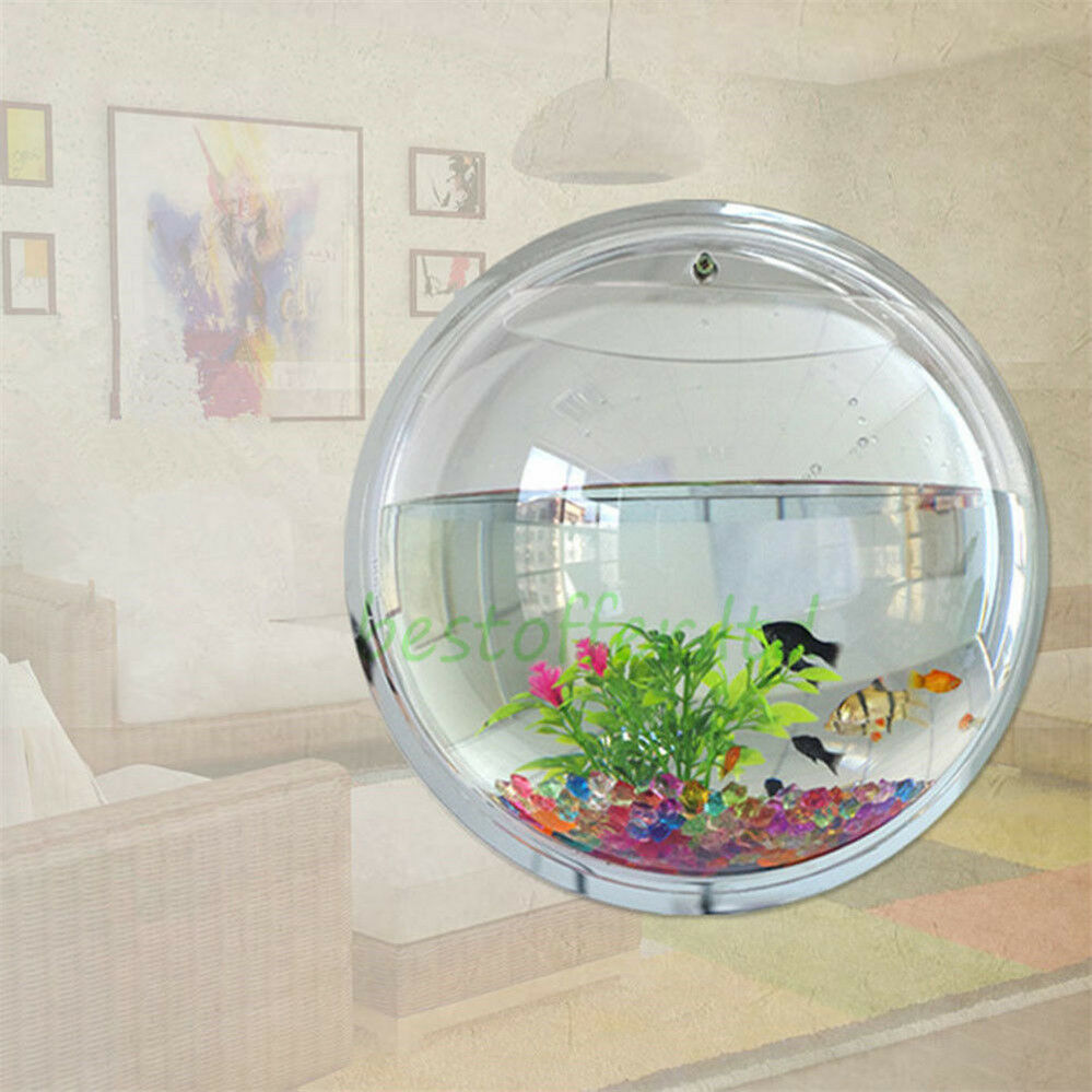New betta fish tank aquarium bowl globe wall hanging for Easiest fish to care for in a bowl