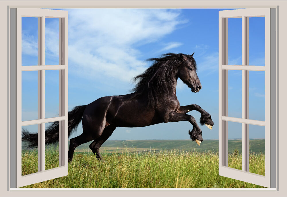 Black horse window view repositionable color wall sticker for Window horses