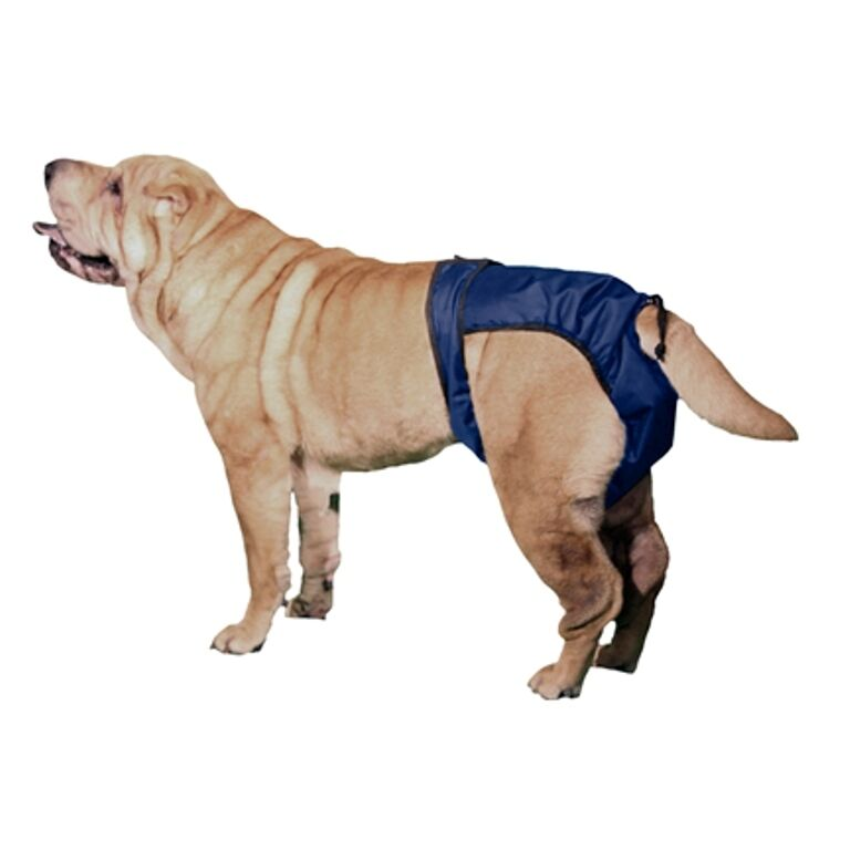 Nappies For Large Dogs