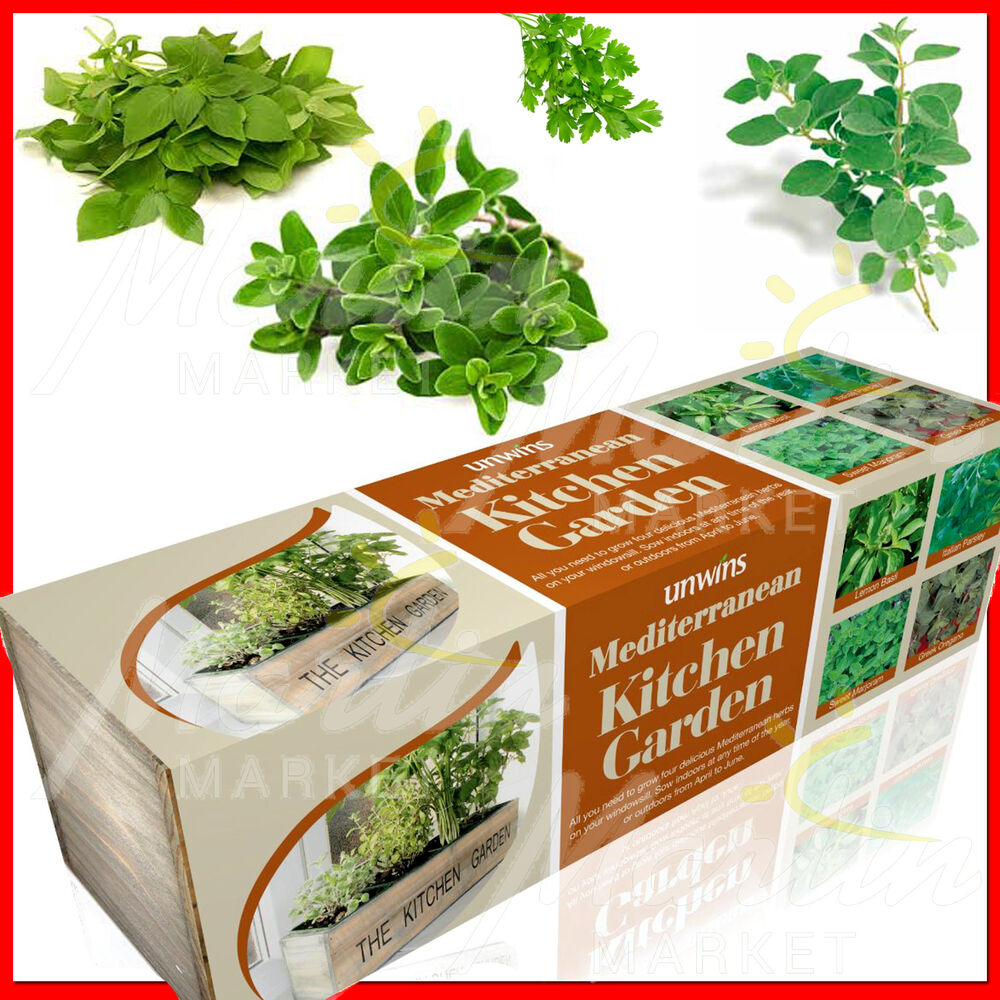 Kitchen Window Herb Planter: Herbs Windowsill Indoor Planter Kitchen Garden Window Pot