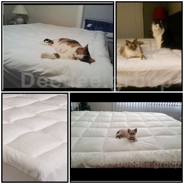 pillow top mattress full queen king protector pad cover bed topper soft pets cat ebay. Black Bedroom Furniture Sets. Home Design Ideas