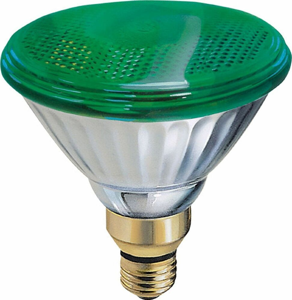 GE Lighting 13474 85-Watt Outdoor PAR38 Incandescent Light