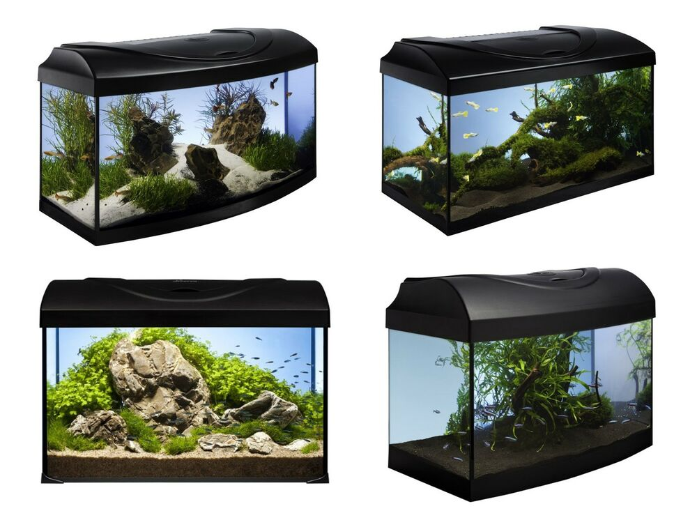 diversa aquarium set startup nano komplett inkl abdeckung filter heizer ebay. Black Bedroom Furniture Sets. Home Design Ideas
