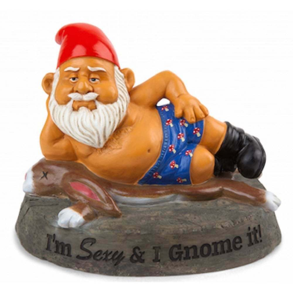 Www Garden Gonme: Novelty Naughty Garden Gnomes Outdoor Statues Ornaments