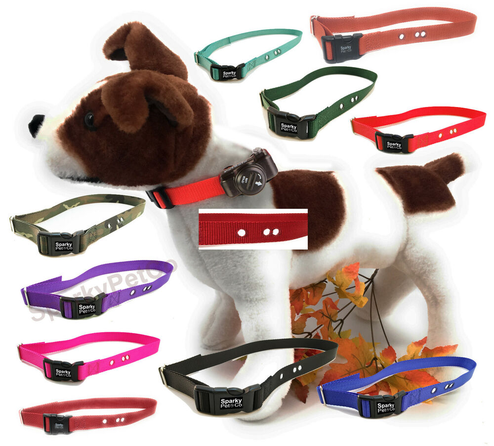 3 4 Quot Dog Fence Replacement Collar Strap Petsafe