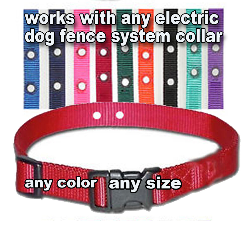 Underground Electric Dog Fence Replacement Collar New Ebay