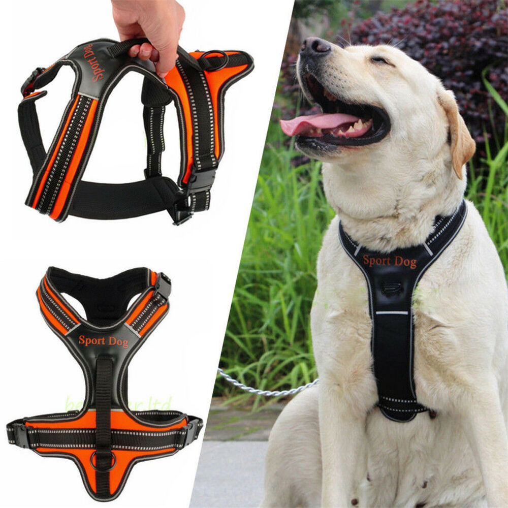 Soft Vest Control Sport Dog Pulling Training Harness For ...