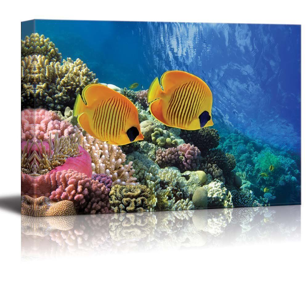 Canvas Prints Wall Art Coral Reef And Tropical Fish In