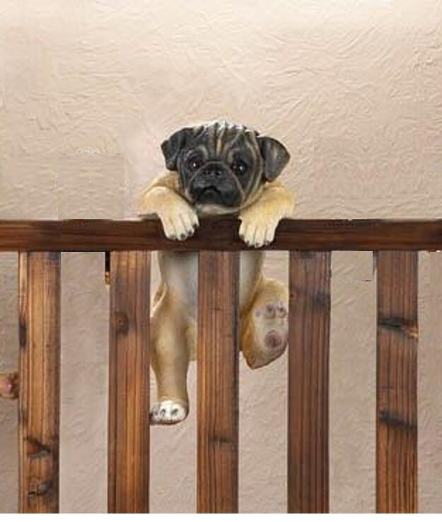 Lifelike Pug Puppy Dog Climbing Fence Hanging Flower Pot