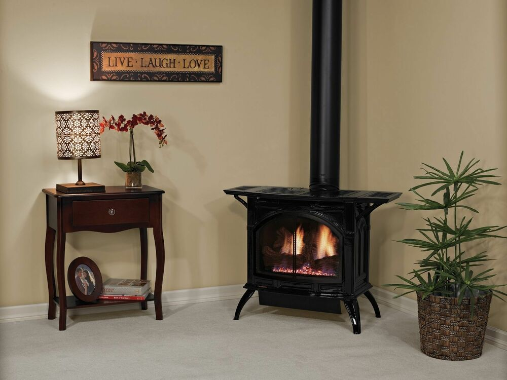 Empire Direct Vent Cast Iron Stove Porcelain Black Medium Gas Free Standing Ebay