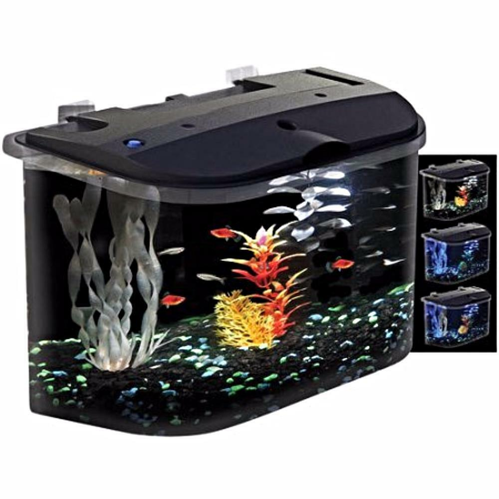 Starter aquarium kit led lighting daylight fish tank water for 5 gallon fish tanks