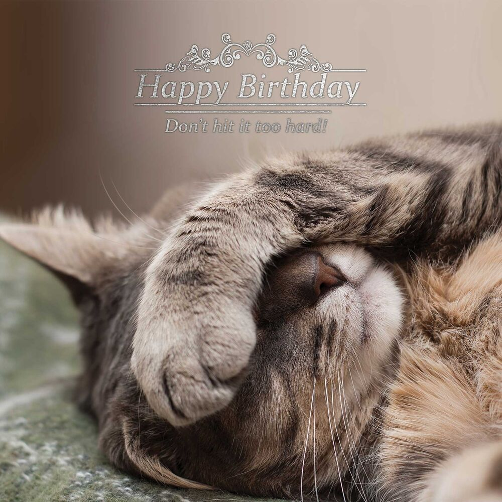 Happy Birthday Cat We Heart It: Cat Foil Birthday Card 5060428498136
