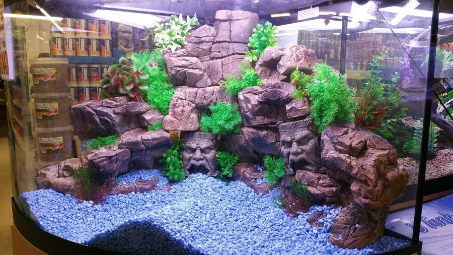 Terrarium Ledge Basking For Reptiles Gecko Bearded Dragon