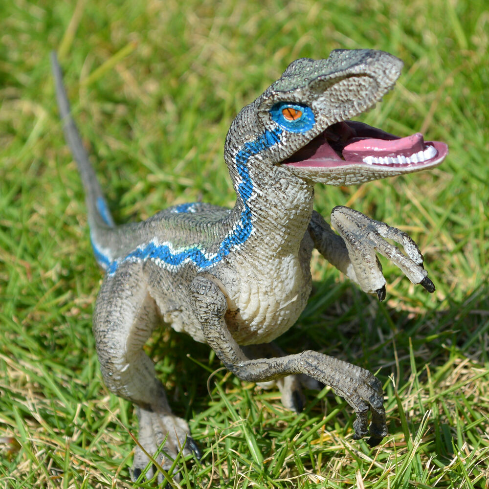 Jurassic blue raptor dinosaur velociraptor toy educational model birthday gift ebay - Raptor dinosaure ...