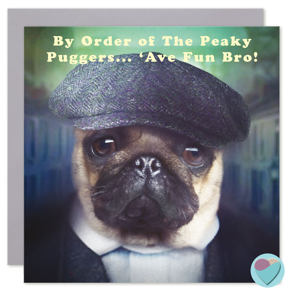 Details About Brother Birthday Card Peaky Blinders Fan Funny Humorous Pug Dog Puppy Lover