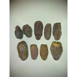 Kyпить  MEDJOOL DATES 10LB  FOR BAKING/COOKING FROM COACHELLA VALLEY CALIFORNIA на еВаy.соm