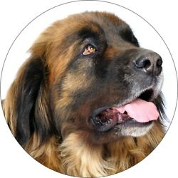 Two Leonberger Dog Printed Vinyl Decal Stickers for Car Fridge Wall Laptop