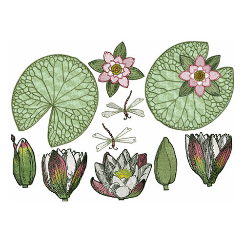 Abc designs water lilies machine embroidery 5 designs set for Embroidery office design version 7 5