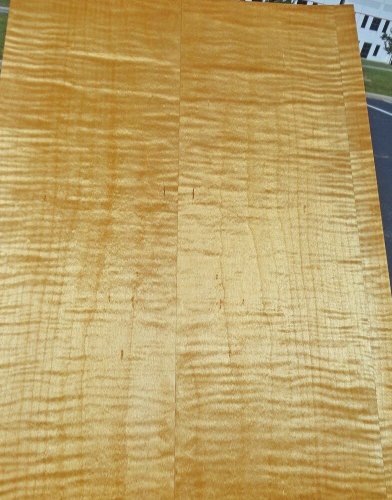 "Maple Curly Figured Tiger wood veneer 13"" x 18"" (1/12th ..."
