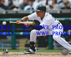 Quintin Berry Detroit Tigers MLB OFFICIAL LICENSED Picture 8X10 BASEBALL PHOTO