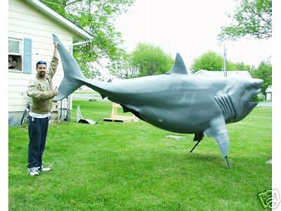 Life size great white shark taxidermy blank ebay for Life size shark plush