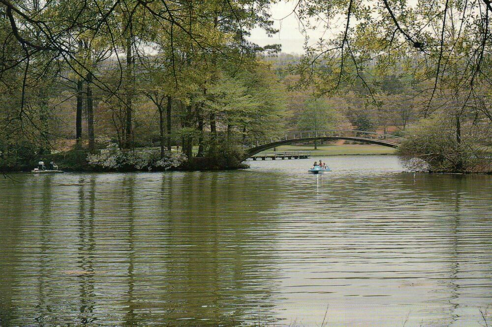 """mountain lake single men over 50 Over the next dozen years, mr  a protected section of mountain lake known as """"the cove"""" is where  a 'resort getaway' to call home order."""