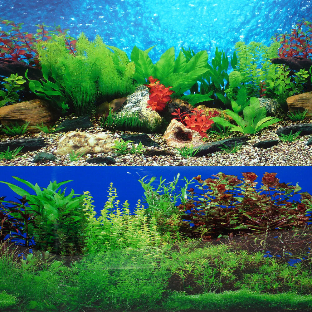 3d aquarium fish tank background feature rock - 9088 20 X 48 Fish Tank Background 2 Sided River Bed Lake Background Aquarium