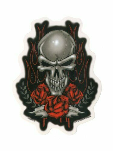 Fts Silver Skull Red Roses Flames And Blood 4 75 Quot X6 Quot Vinyl