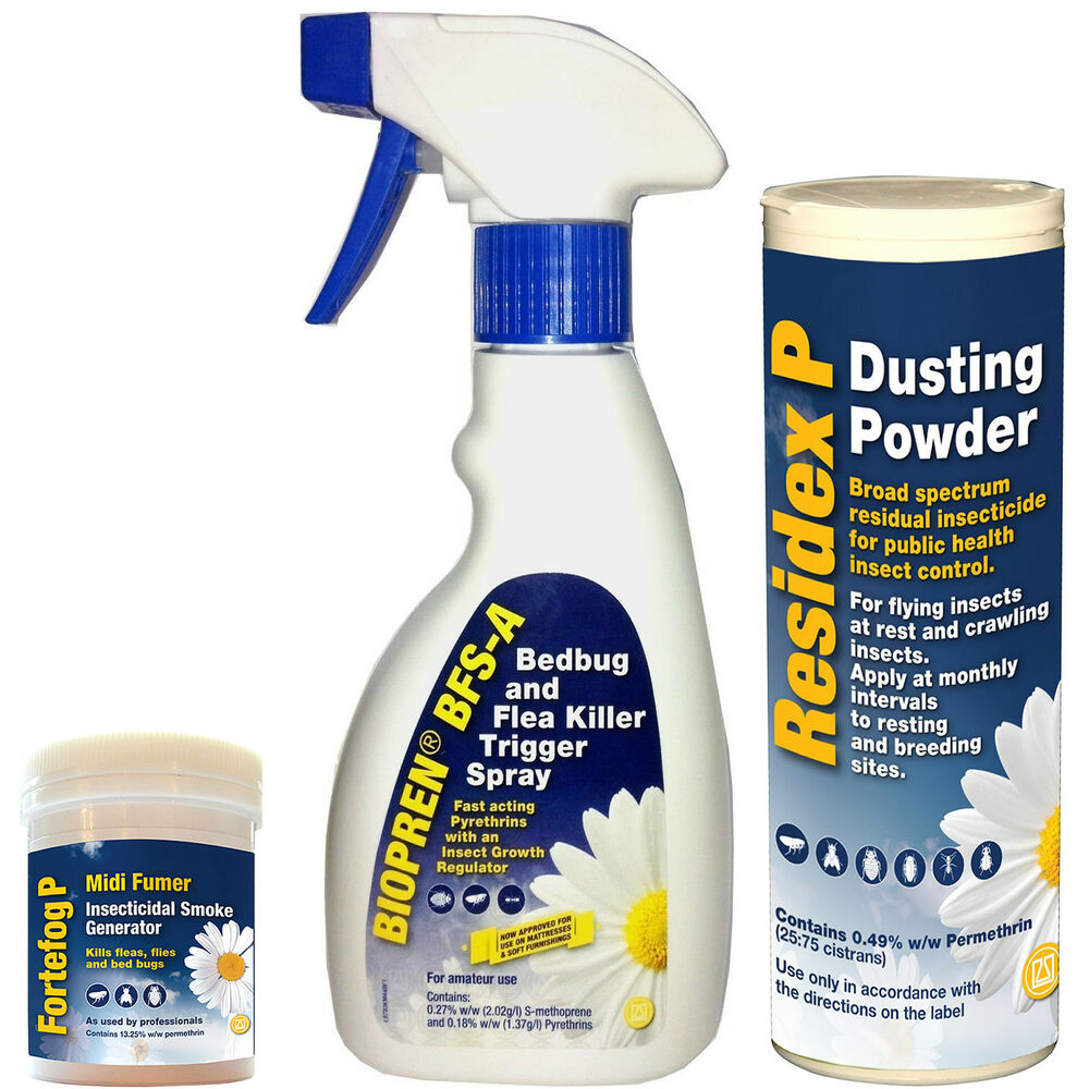 Most Effective Spray To Kill Bed Bugs