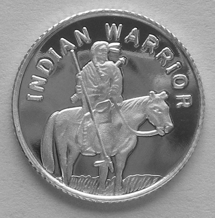 100 1 Gram 999 Pure Silver Rounds Of The Indian Warrior