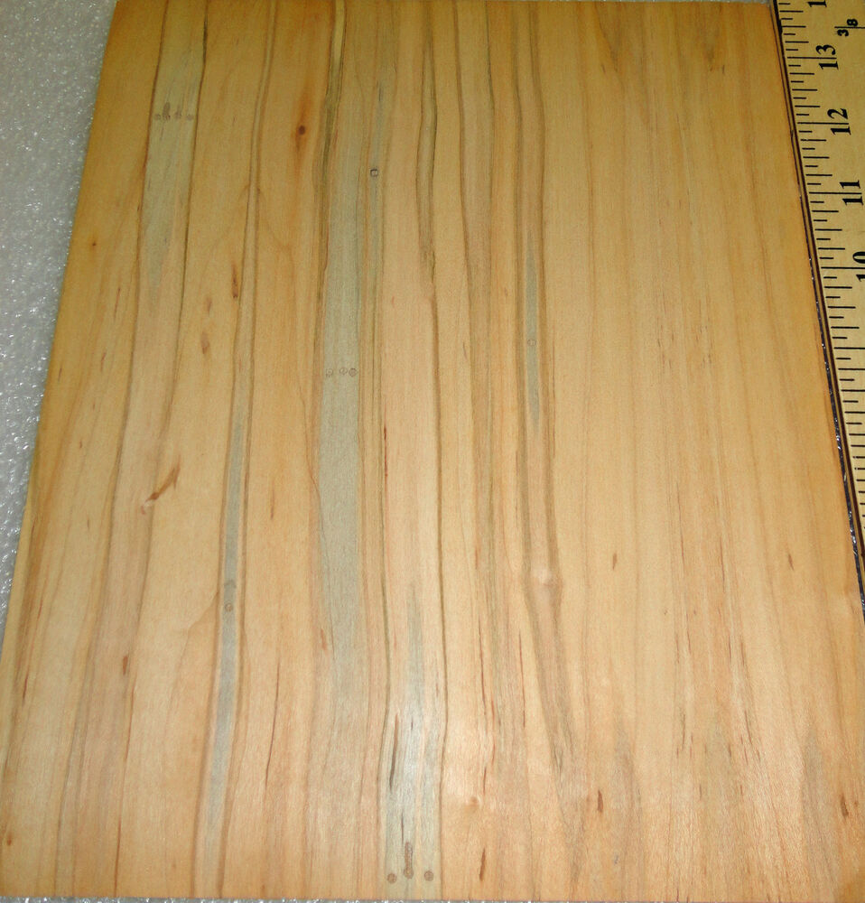 Wormy natural maple wood veneer quot with cloth backer