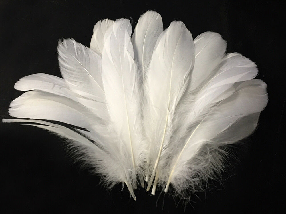 Goose feathers white goose nagoire wholesale feathers for Where can i buy feathers for crafts