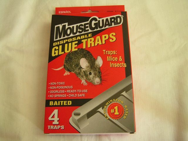 12 mouse glue traps mice insects ebay. Black Bedroom Furniture Sets. Home Design Ideas